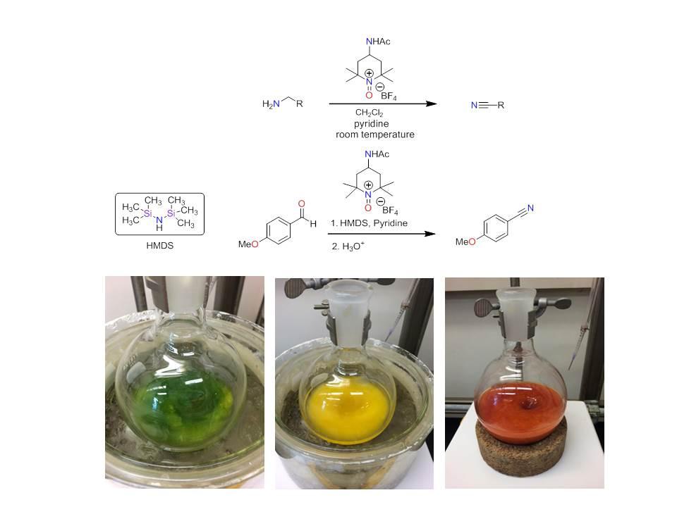 Oxoammonium Salt Oxidations